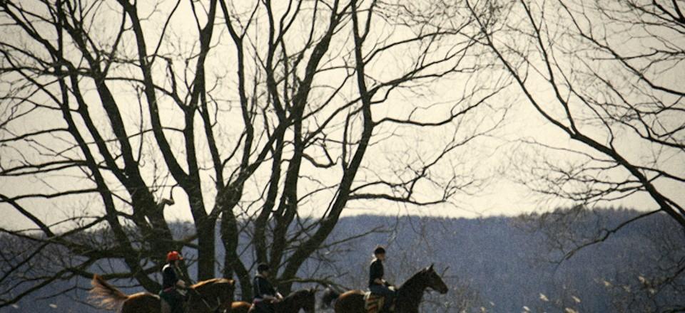 häst-ringsjön
